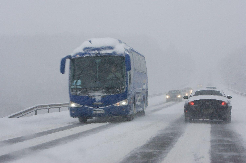 Emigracija: autobusai ir troleibusai šiemet rieda tuštesni