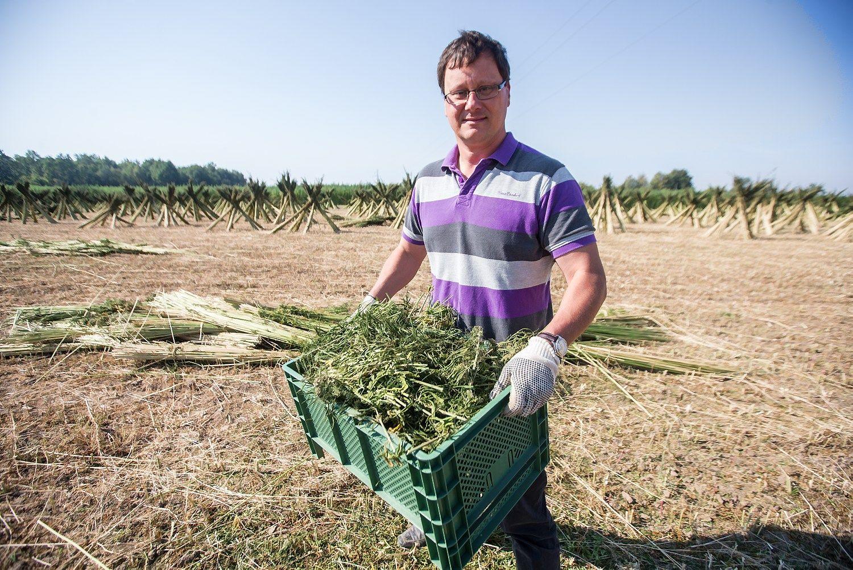 Lietuvoje startuolių ekosistema jau yra