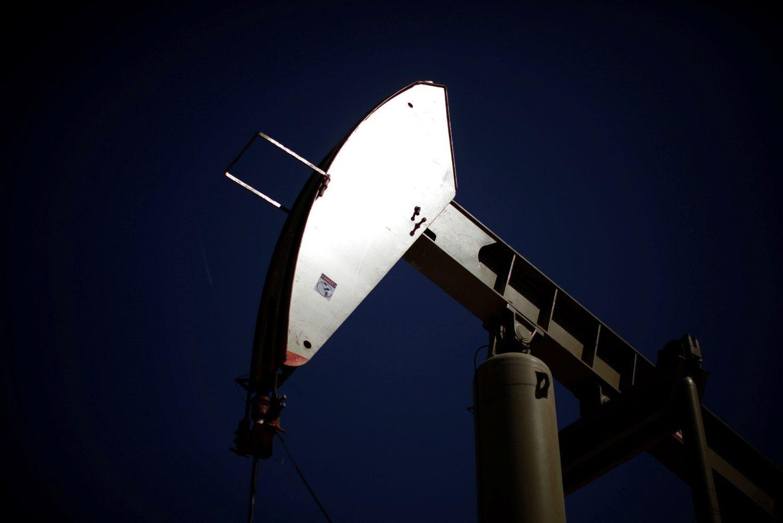OPEC žvilgčioja, kaip elgsis Rusija