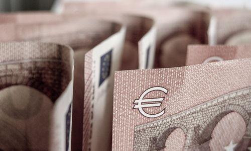 Nuo Naujųjų metų NPD kyla iki 310 Eur