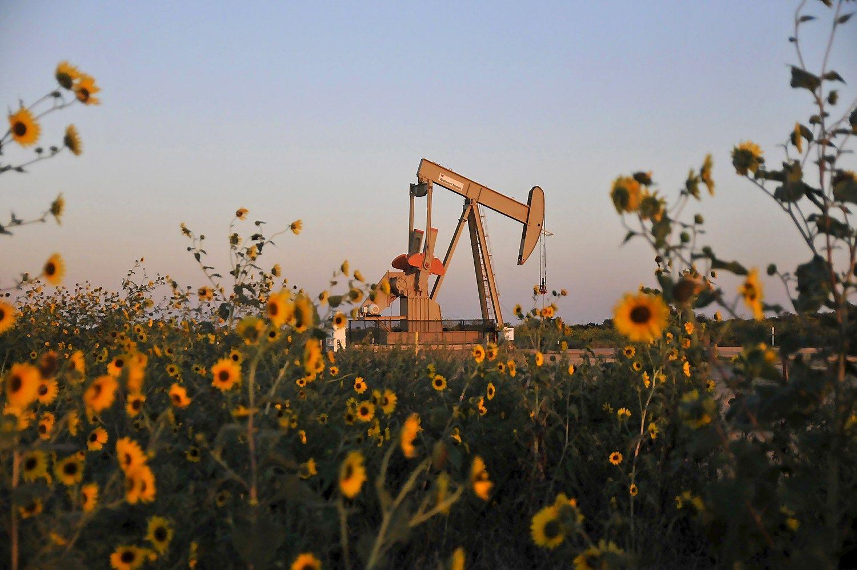 Nafta JAV saugyklose gesina kainų augimą