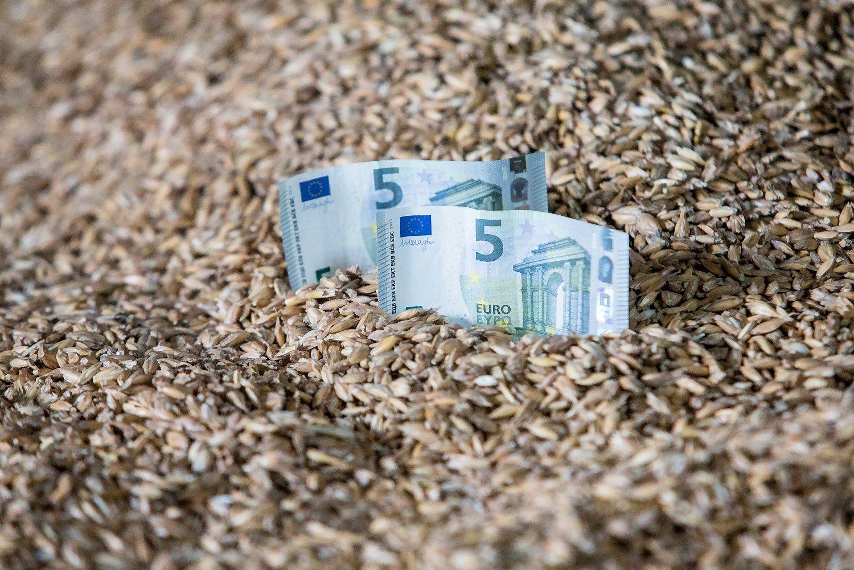 Kiek darbuotojams moka didžiosios agroverslo įmonės