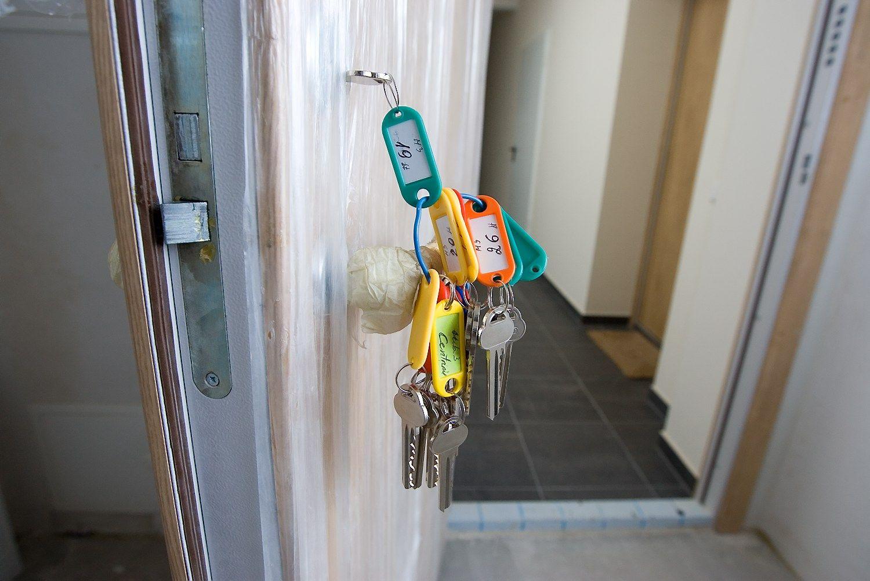 NT plėtotojai pardavė penktadaliu daugiau butų