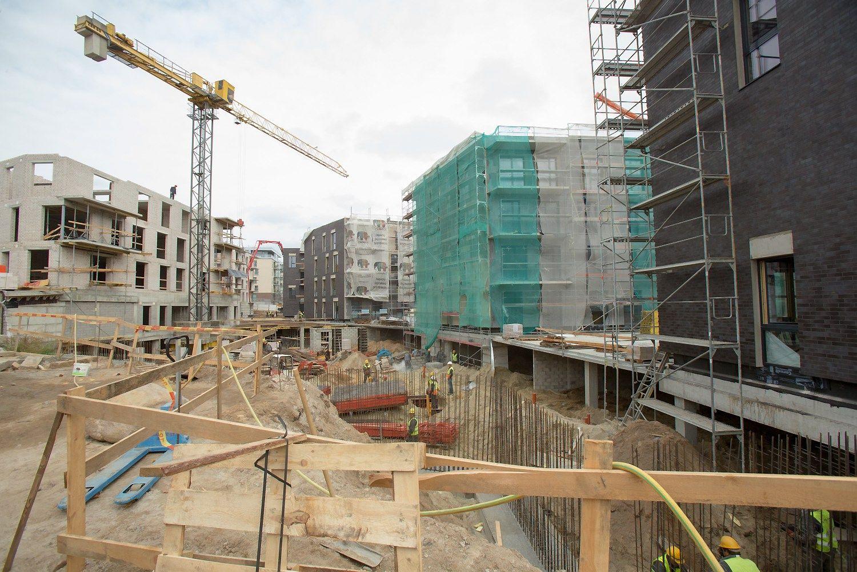"""Daugiau nei pusę numatytų investicijų """"Hanner"""" skirs Latvijai ir Rumunijai"""