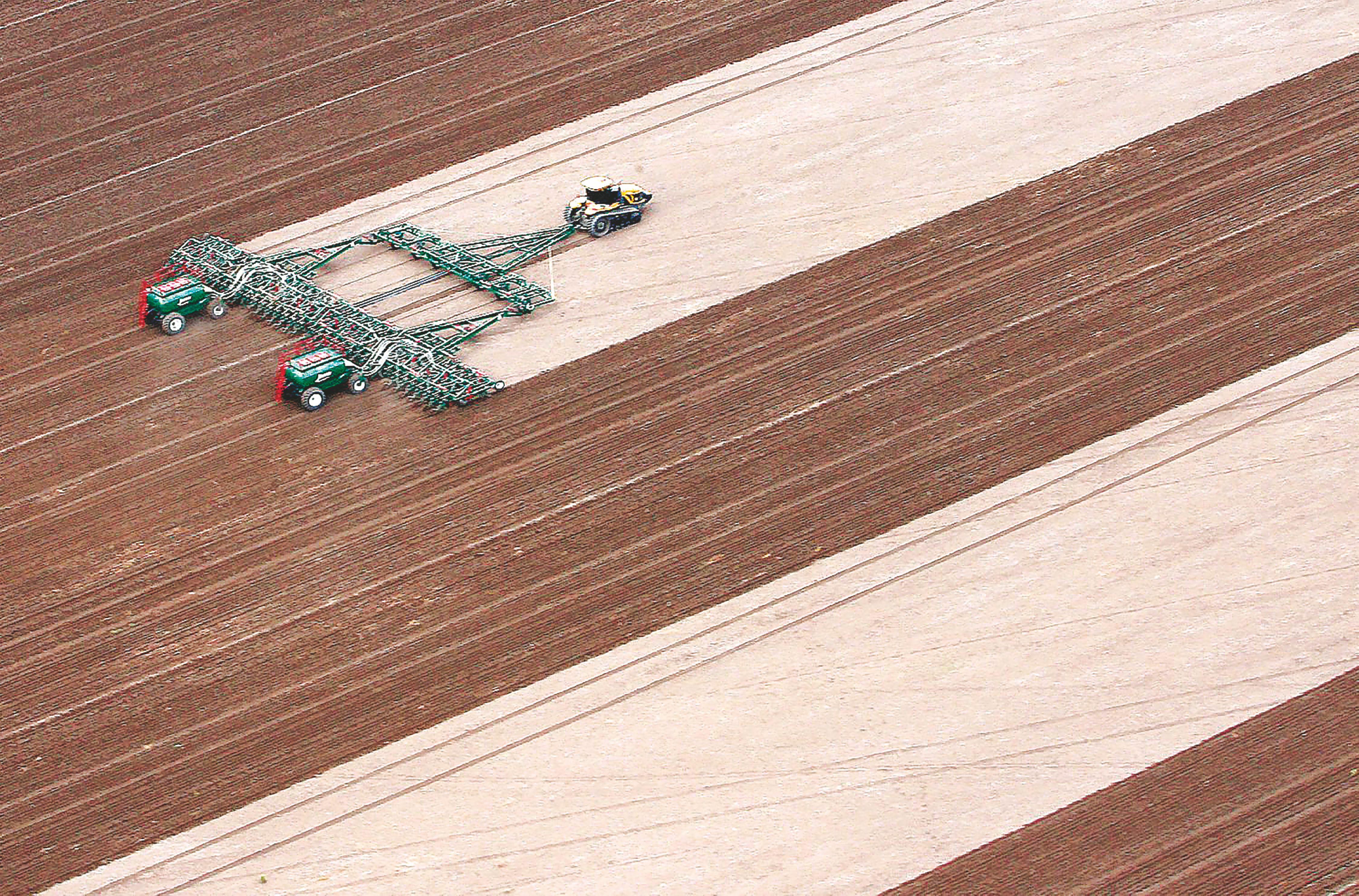 Sėklų ir pesticidų sektorius pasikeitė neatpažįstamai