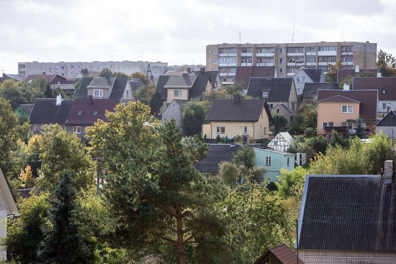 Plungė įveikė Rumuniją ir JK: pritraukė naują investuotoją