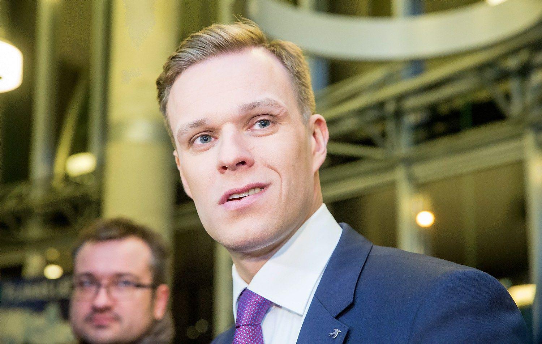 Gabrielius Landsbergis toliau vadovaus TS-LKD