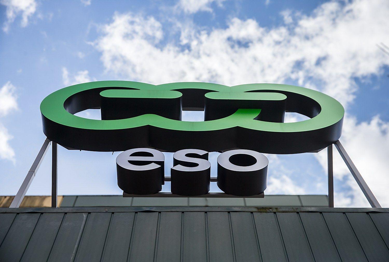 ESO investicijos į elektros tinklą augo 20%