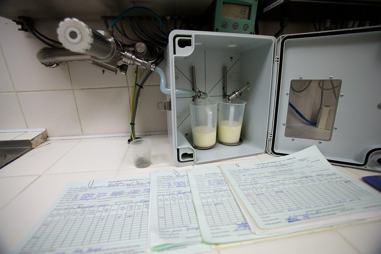 Pieno kaina smuko pirmą kartą per pusmetį