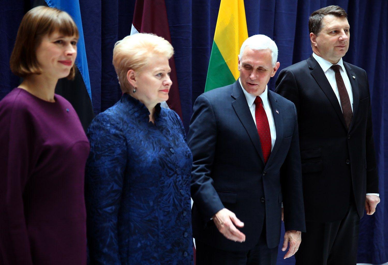 Grybauskaitė JAV viceprezidentui priminė apie regiono saugumo problemas