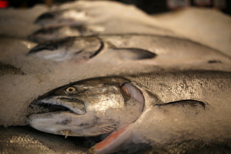 Pabrangusi lašiša pučia ir kitų žuvų kainas