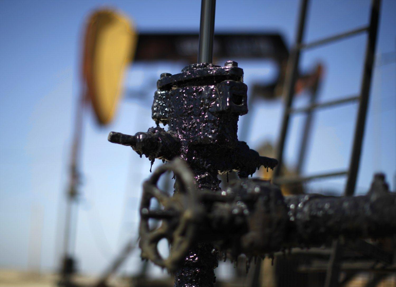 JAV skalūnininkų naftos kainos nenužudė,tai juossustiprino