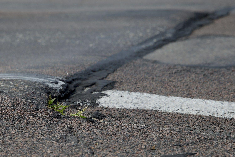 Ministras abejoja, ar Vilniaus–Utenos keliui bus pasirinkta koncesija