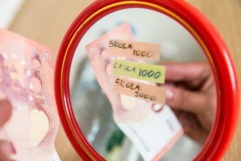 Šiaulių banko vartojimo kreditai – sienoms arba skardoms