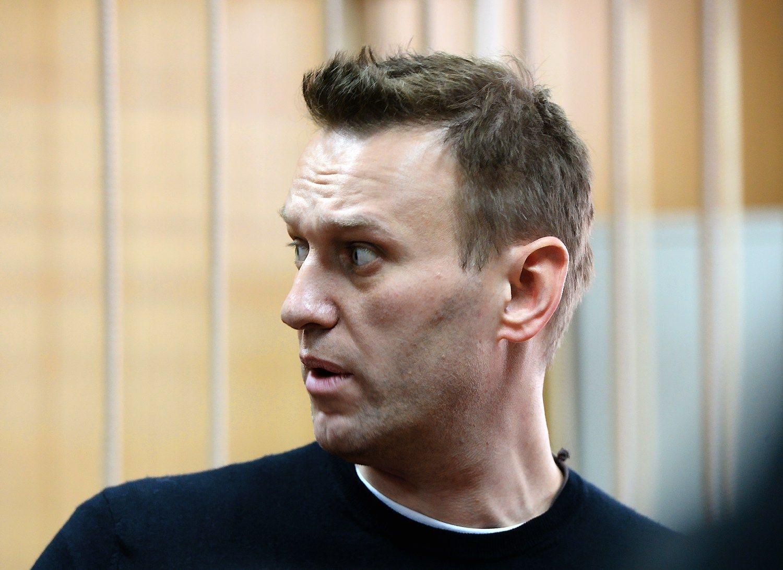 Navalnui – 15 parų arešto ir piniginė bauda