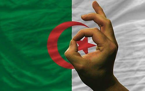 Alžyras laukia lietuviškos mėsos ir pieno