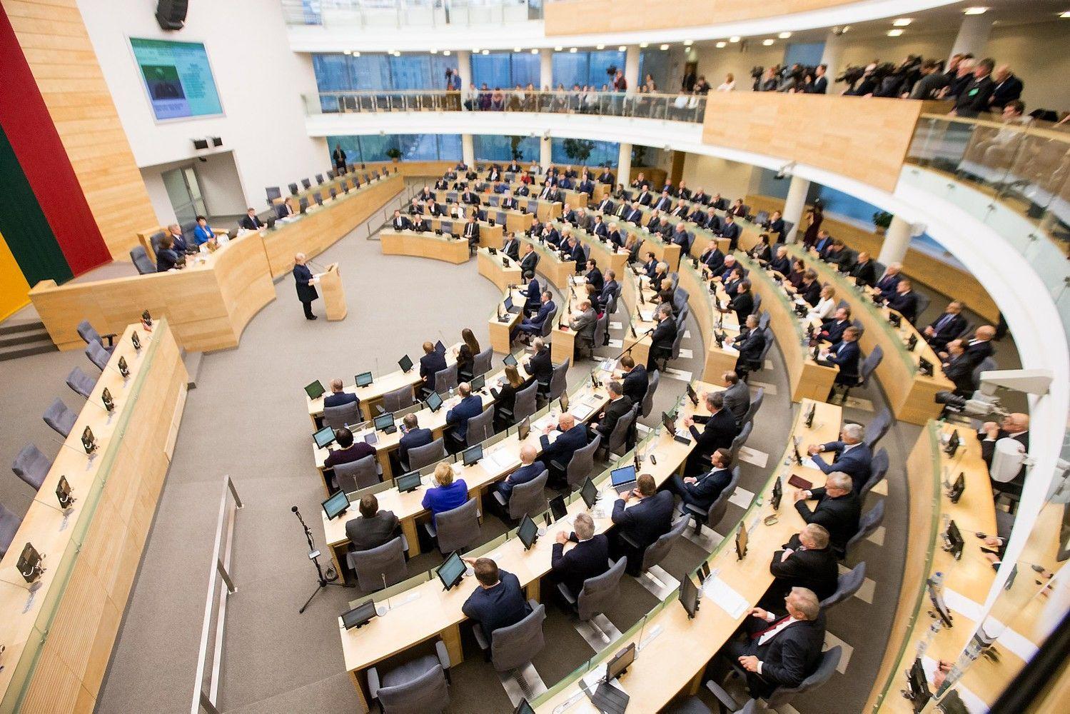 Su Seimo narių skaičiaus mažinimu sutinka, bet su išlygomis