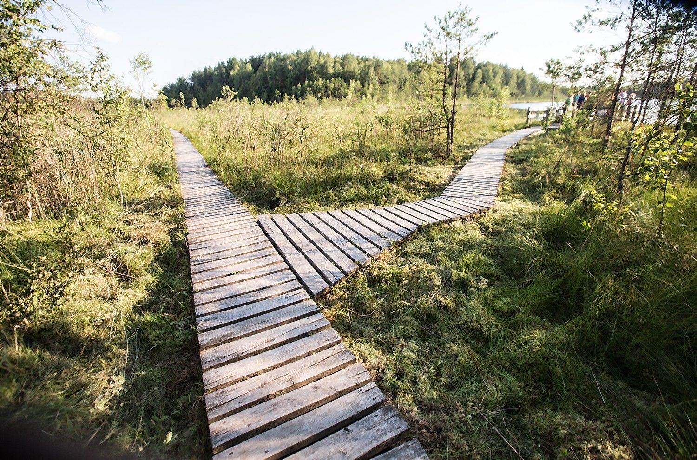 Įdomiausi pažintiniai takai Lietuvoje