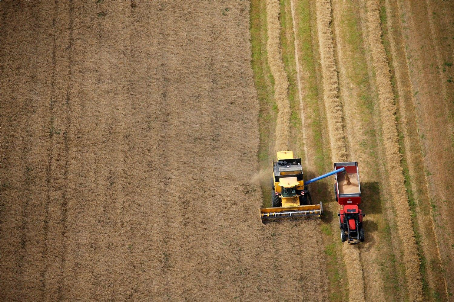 Apklausė ūkininkus: tikisi uždirbti daugiau