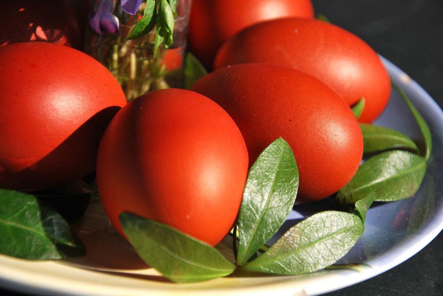 Šventės ne kasdien: kiaušinio reabilitacija