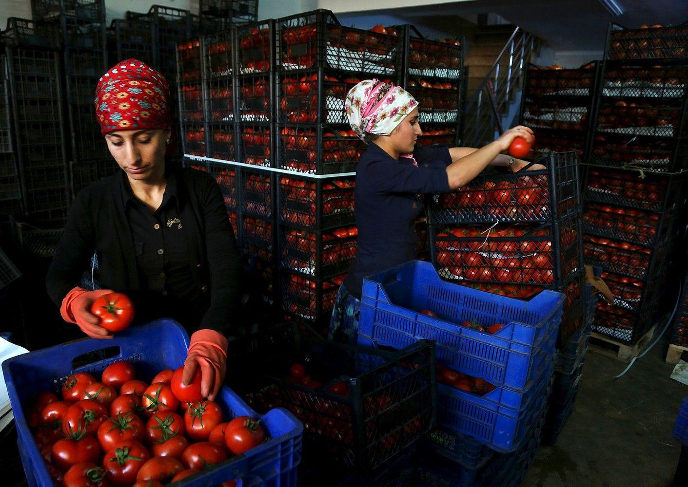 Rusijos ir Turkijos prekybos karas: kenčia abi pusės