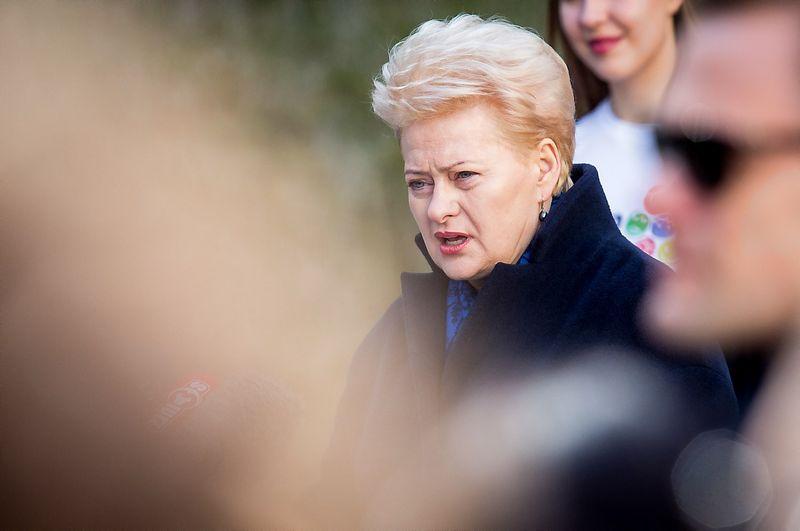 Dalia Grybauskaitė. Luko Balandžio (15min.lt) nuotr.