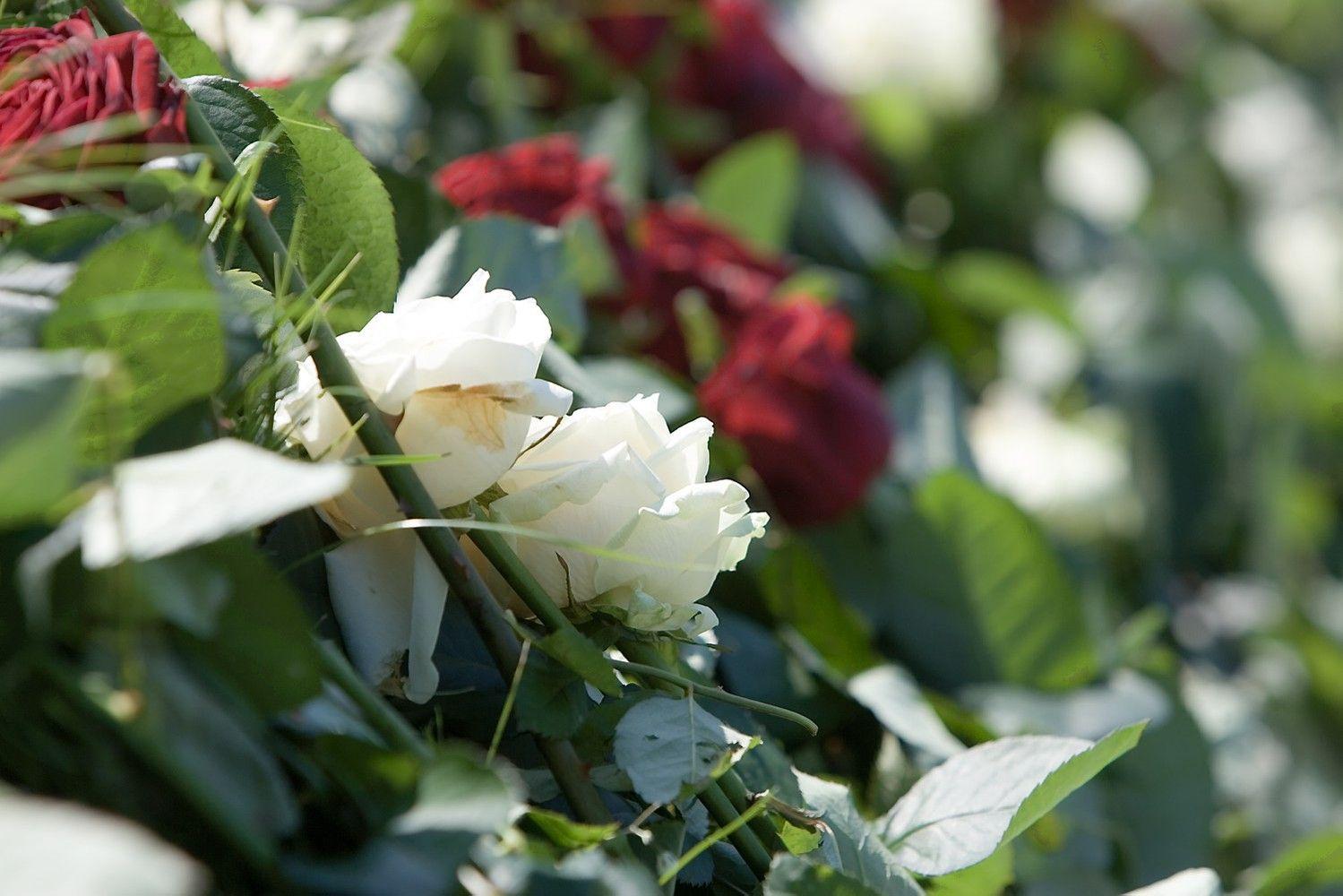 Sostinės valdžia nusprendė, kur Vilniuje galima statyti krematoriumus