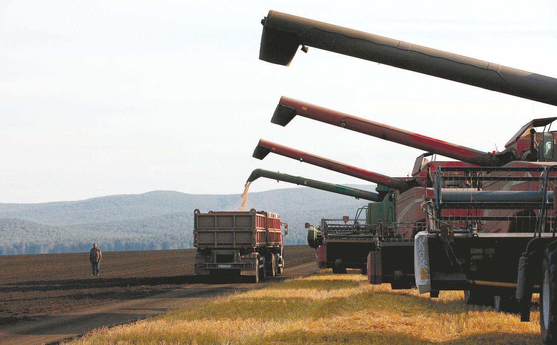 Rublis prikėlė rusų žemės ūkį