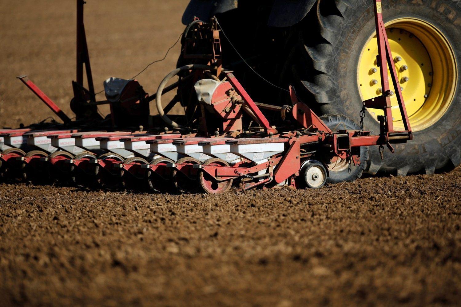 Naujos paramos schemos – javų, bulvių ir runkelių augintojams