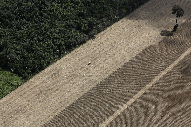 Nesąžiningų ūkininkų NMA dairysis iš palydovo