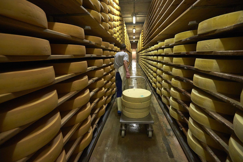 Sūris - į Pietų Korėją, sviestas - į Kubą