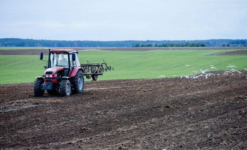 Derlingos žemės hektaras Lietuvos viduryje gali atsieiti net ir 8.000–10.000 Eur. Juditos Grigelytės (VŽ) nuotr.