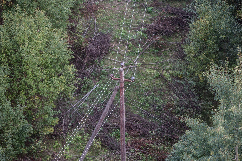 Įstatymų brūzgynai aplinkgendančias elektros linijas