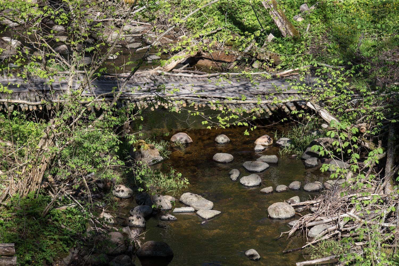 Kelionės po Lietuvą: Asvejos regioninio parko pažintiniai takai