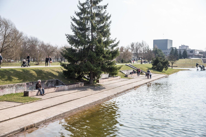 Panevėžio miesto administracijos direktoriumi paskirtas Pauža
