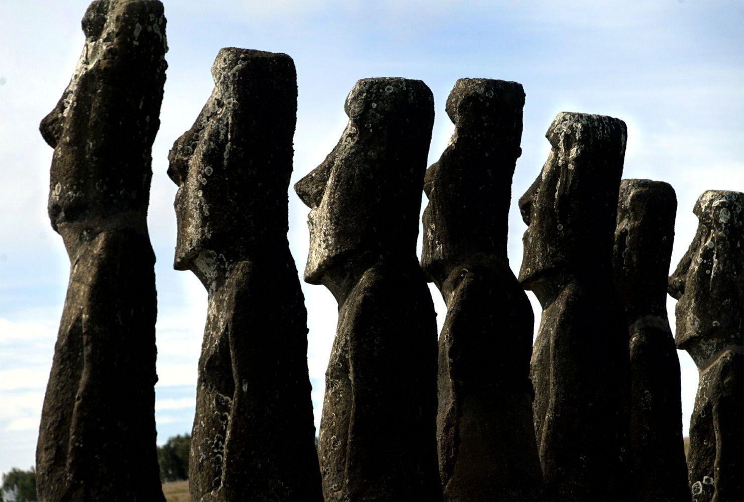 Iliustruotoji istorija: Velykų salos skulptūros vaikščiojo