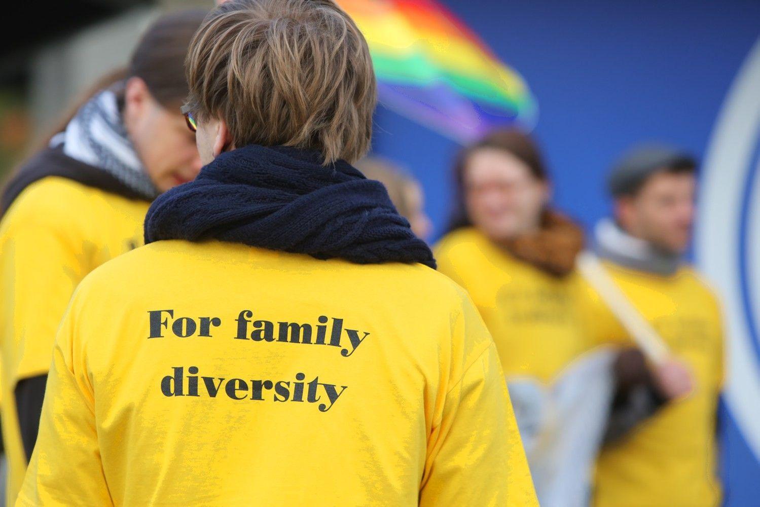 Seimas nesutiko imtis homoseksualų partnerystės įteisinimo