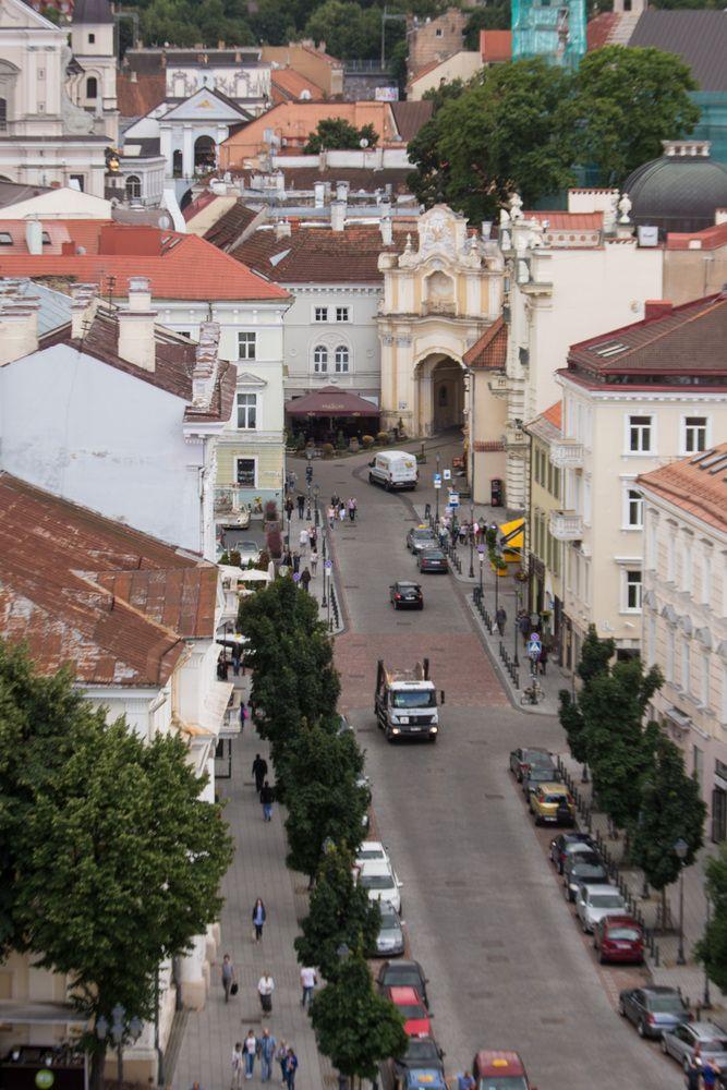 Ant prekystalio guldo objektus Vilniaus senamiestyje ir karinėse teritorijose