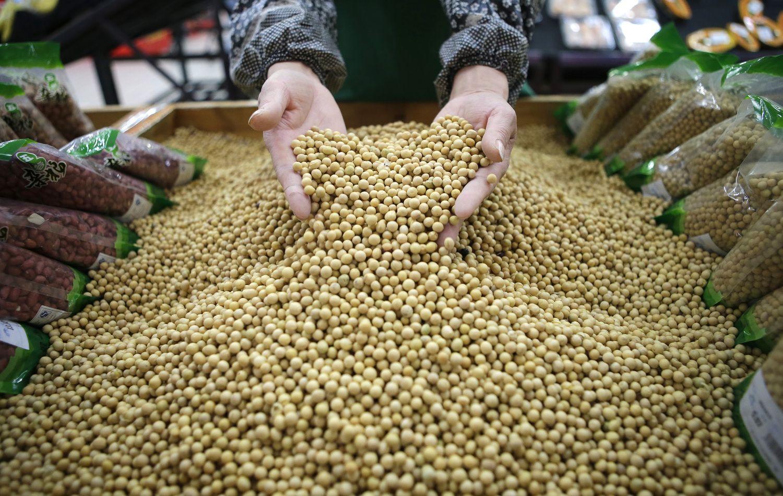 Šimtmečio žaliavos augintojus išlaiko Kinija