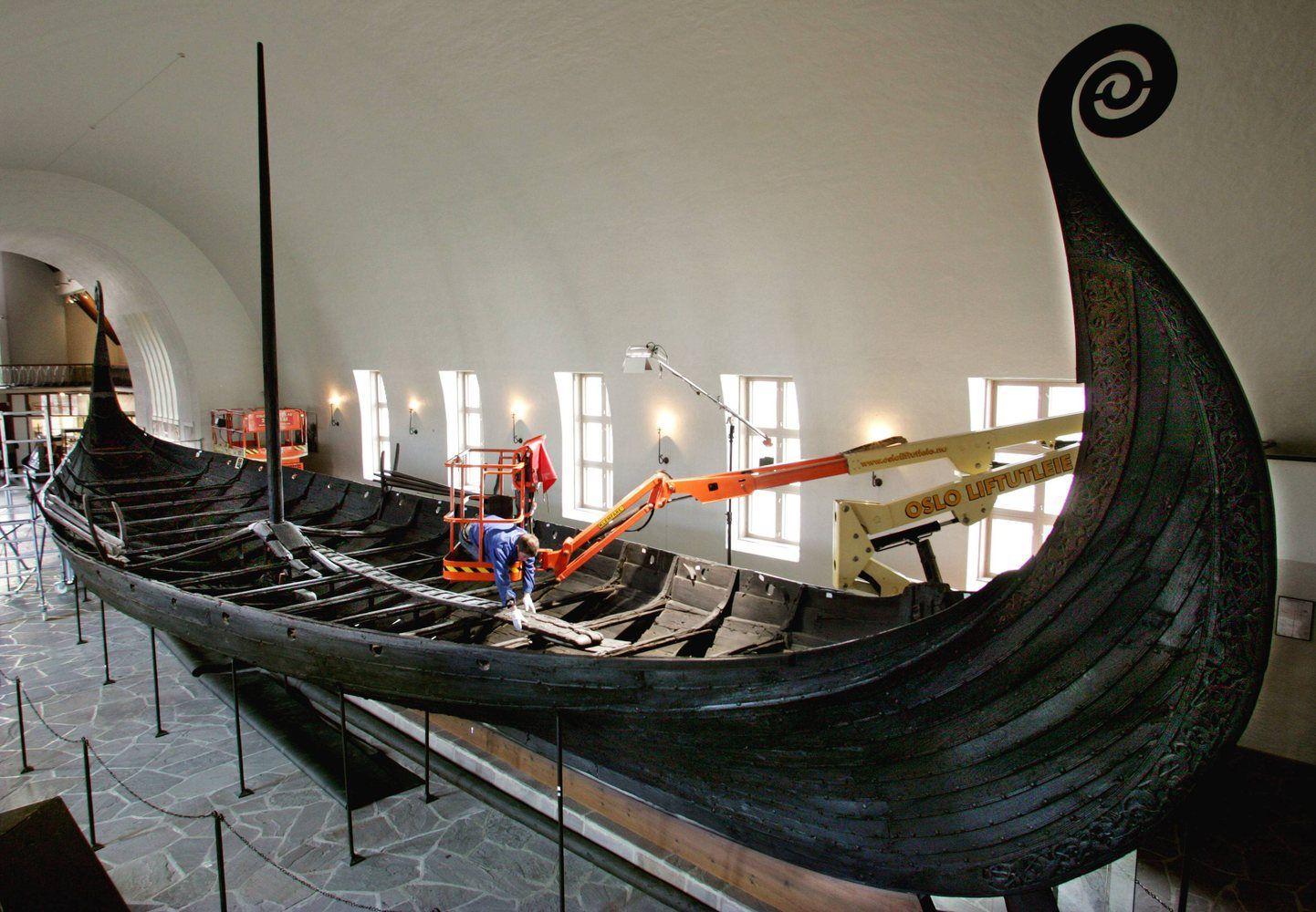 Iliustruotoji istorija: nauja teorija apie vikingus
