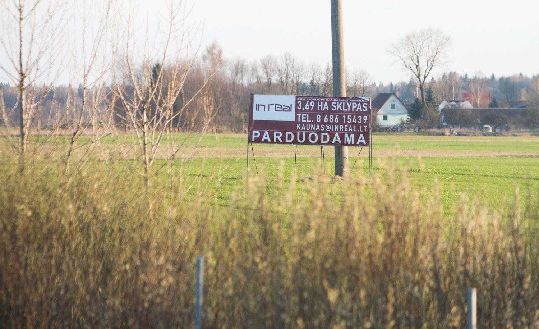 NT pusmetis: pirko daugiau, bet ne Vilniuje