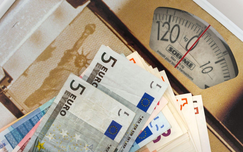 Investuotojai skaičiuoja pusmečio rezultatus: dalį pelno nubraukė doleris