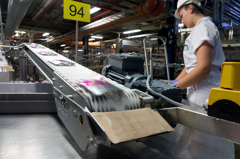 Pramonės produkcijos kainų šuoliavimas slopsta