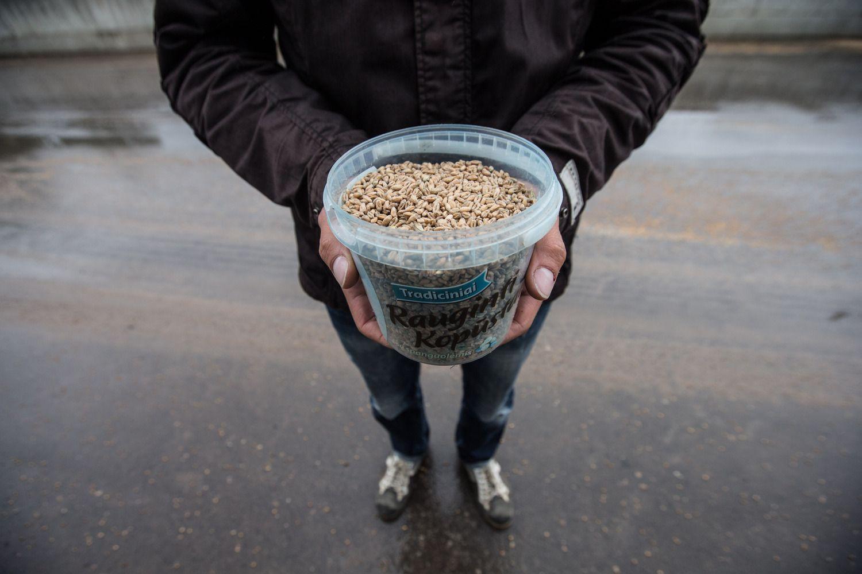 Baltijos ir Višegrado šalys reikalaus didesnių ES išmokų žemdirbiams