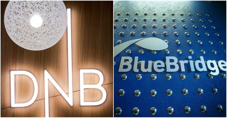 """DNB IT ūkį už milijoną eurų prižiūrės """"Blue Bridge"""""""