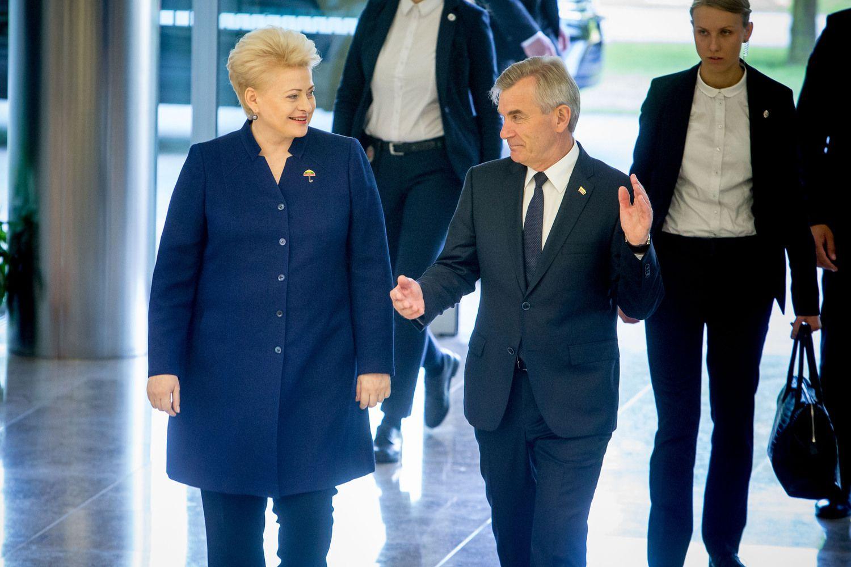 Prezidentei tiko visi Seimo sesijos pabaigoje priimti įstatymai