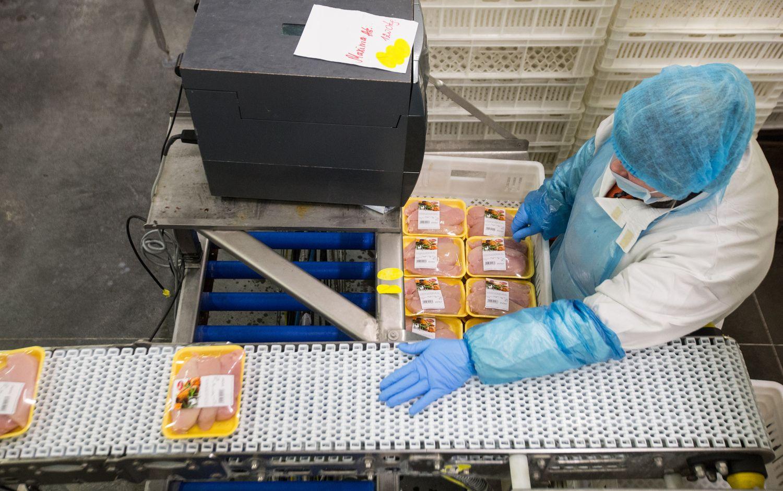"""""""KG Group"""" rado pirkėjų Japonijoje: išplaukė 20 t paukštienos gaminių"""