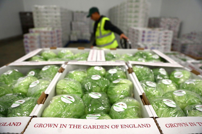 JK maistininkai nerimsta dėl išvykstančių ES darbuotojų