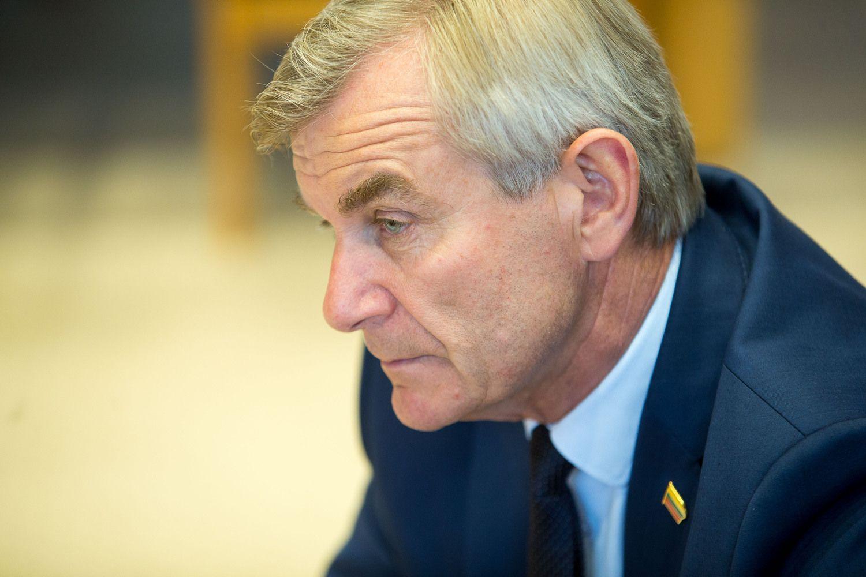Seimo pirmininkas: galime turėti ir neformalią, nebūtinai koalicinę daugumą