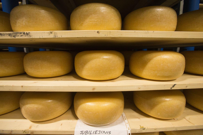 Lietuvos pienininkams - galimybė produkcija prekiauti aukcione